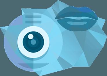 вебкамера и общение